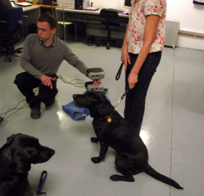 3D scanning of guide dog